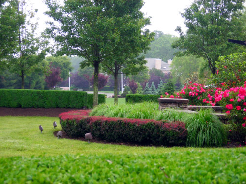 Landscapes...Let Zale's professional landscapers make your business or home stand out!