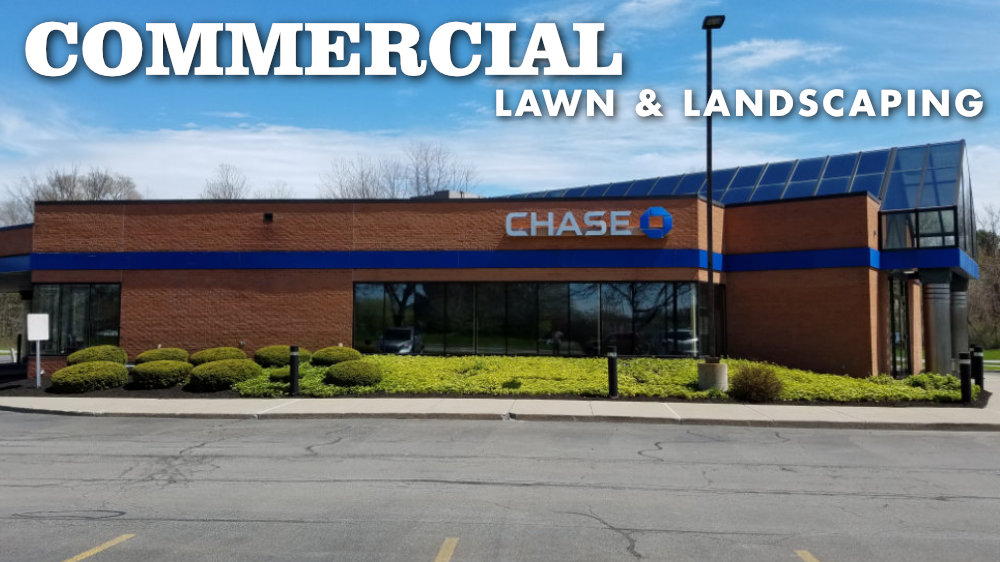Commercial Landscaping and Lawn Care